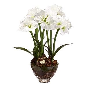 Arcadia Silk Plantation 33.75″ Amaryllis/Pine Cone in Glass Vase White
