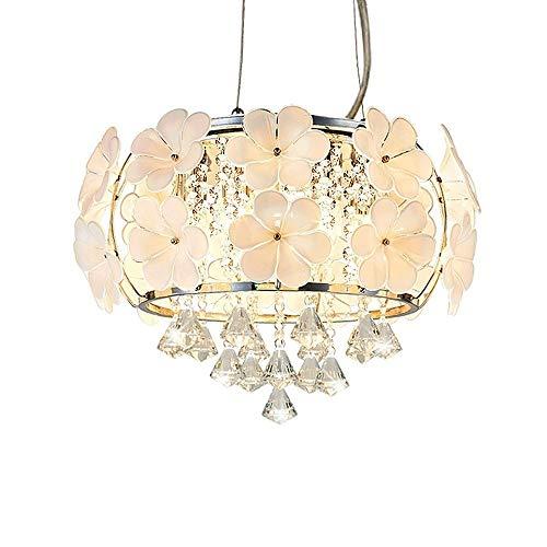 WNN-T Creativa moderna minimalista del jardín de flores Arte K9 araña de cristal de la personalidad creativa del restaurante cálido dormitorio de la lámpara de techo WNN-T