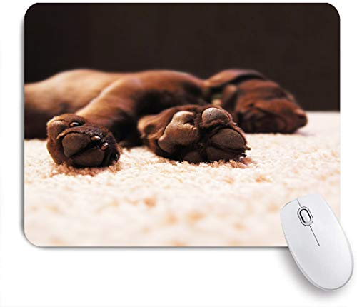 VANKINE Mouse Pad a Cute Chocolate lab Puppy Sleeping in a House with Shallow dept Non-Slip Rubber Gaming Mouse Pad Rectangle Mouse Pads for Computers Laptop
