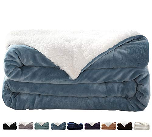 LIANLAM Sherpa Fleece Blanket Queen Size Dual Sided Blanket Super Soft and Warm Fuzzy Plush Cozy Luxury Bed Blankets Microfiber (Carolina Blue, 90'x90')