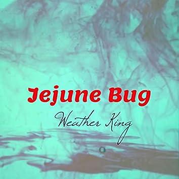 Jejune Bug