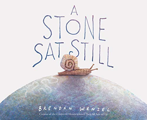Compare Textbook Prices for A Stone Sat Still: Environmental and Nature Picture Book for Kids, Perspective Book for Preschool and Kindergarten, Award Winning Illustrator  ISBN 9781452173184 by Wenzel, Brendan