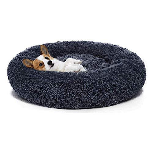 Monba Premium Orthopädisch Hundebett mit Abnehmbarer Waschbeständiger Bezug Chihuahua Katze Welpen Tierkissen Weich Gepolstert Hundekorb