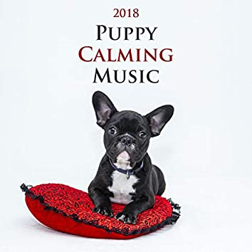 Puppy Calming Music 2018 - World's Most Relaxing Music