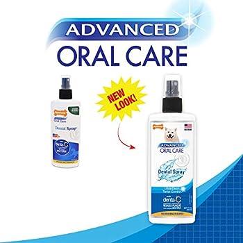 Nylabone Spray dentaire avancé