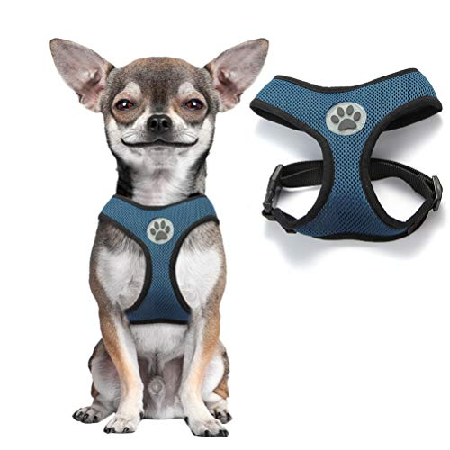 BINGPET Soft Mesh Dog Harness Pet Walking Vest Puppy Padded Harnesses Adjustable, Navy Small