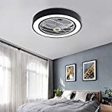 Jinweite Ceiling Fan with Light, 22 inches LED Remote Control...