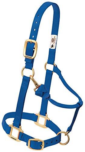 Weaver Leather 35-7636-BL - Halter Ajustable de Nailon, tamaño Grande, Color Azul