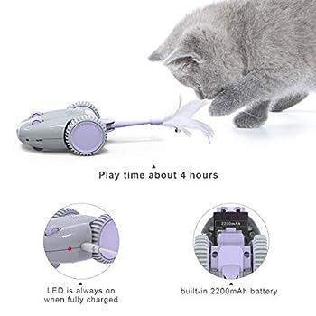 DADYPET Jouet pour Chat Automatique, Souris Mécanique Jouet pour Chat avec Queue de Plumes, Jouet Interactif pour Chat avec Rat couinement- Rechargeable par USB