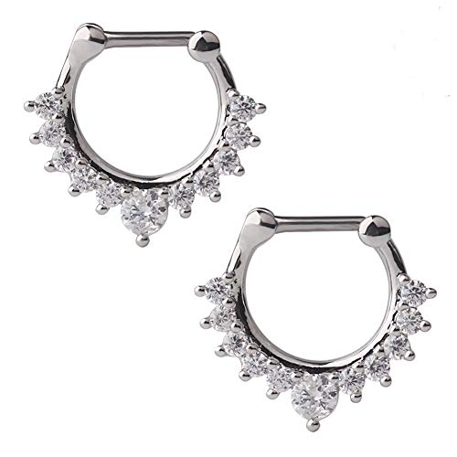 Ruifan 16G Nose Ear Daith Septum Clicker Ring with Clear CZ Gems 316L Surgical Steel 2PCS - Steel