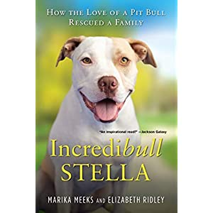 Incredibull Stella: How the Love of a Pit Bull Rescued a Family