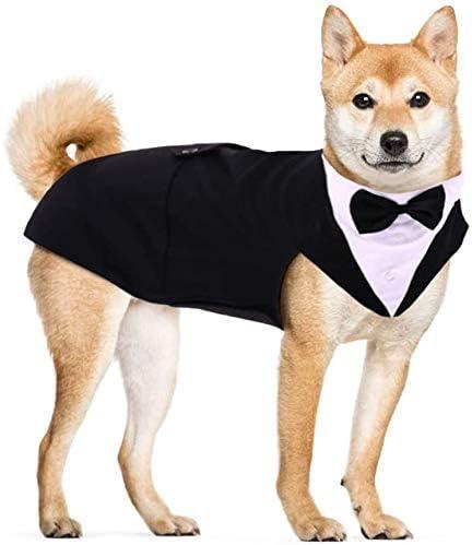 Hjyokuso Traje de Esmoquin para Perros de Tamaño Pequeño/Mediano/Grande, Ropa para Mascotas, Camisa para Cachorros con Lazo Negro Extraíble, Disfraz Formal para Bodas y Festivales(Negro, XL)