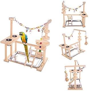 Best bird playground play gym Reviews