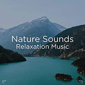 """!!"""" Nature Sounds Relaxation Music """"!!"""