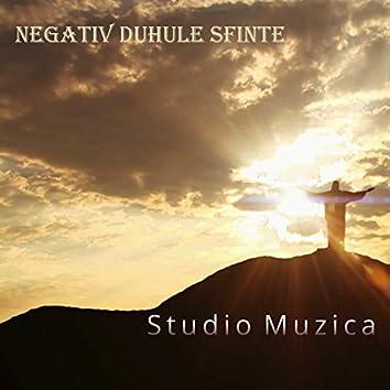 Duhule Sfinte (Negativ/Instrumental Marius si Fernando din Barbulesti)