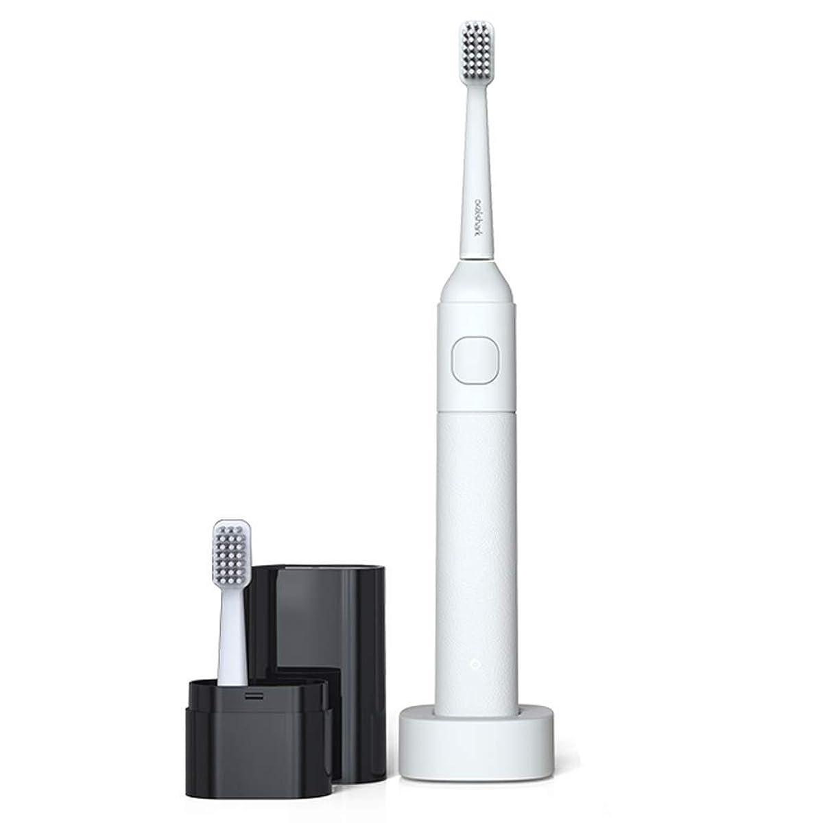 事前移住する不完全電動歯ブラシソニック電動歯ブラシ大人の柔らかい髪の充電式ホームカップル歯ブラシ