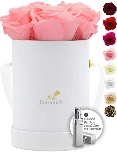 Rosenlieb Rosenbox mit 4 Infinity Rosen (3 Jahre haltbar)  Echte konservierte Rosen   Flowerbox inkl. Grußkarte   Geschenk für Frau Freundin Oma (Pico Bellissima Rosa)