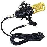 Micrófono condensador Kit Bm-800 MIC conjunto con el micrófono esponja cubierta de montaje de choque cable de audio for estudio de grabación y radiodifusión Sonido Prístino y Preciso (Color : Black)