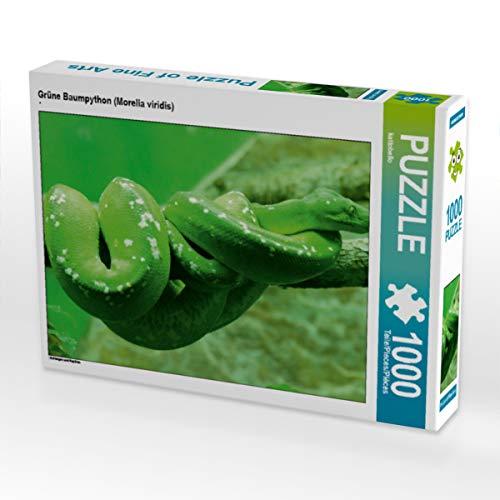 CALVENDO Puzzle Grüne Baumpython (Morelia Viridis) 1000 Teile Lege-Größe 64 x 48 cm Foto-Puzzle Bild von Kattobello