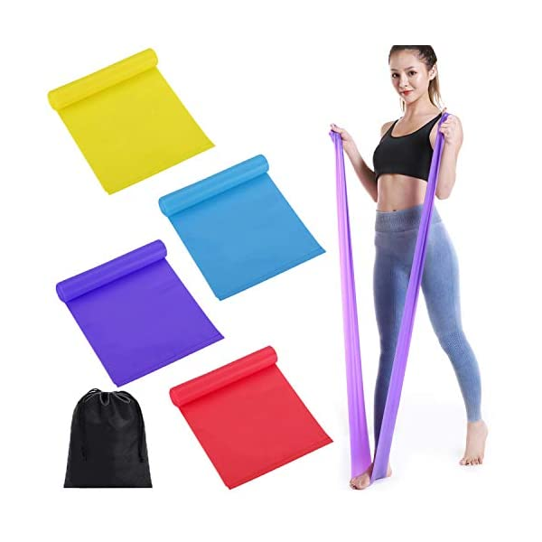 GCOA 4 PCS Resistance Bands Set,Latex Exercise Bands with 4 Resistance Levels, Skin-Friendly Elastic Bands with Carrying Pouch for Home Workout, Strength Training, Physical Therapy, Yoga, Pilates