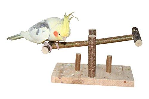 Tolle Vogelwippe bzw. Vogelschaukel aus Naturholz. Handgemacht   Tolles Wellensittich Spielzeug bzw Zubehör