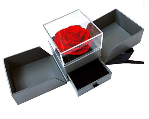 Rosa Roja Eterna en Caja joyero con Lazada - Flores San Valentín - Flores preservadas Pedida de Mano, Bodas de Oro, Aniversario Pareja, Pedida de Matrimonio - Incluye Tarjeta DEDICATORIA