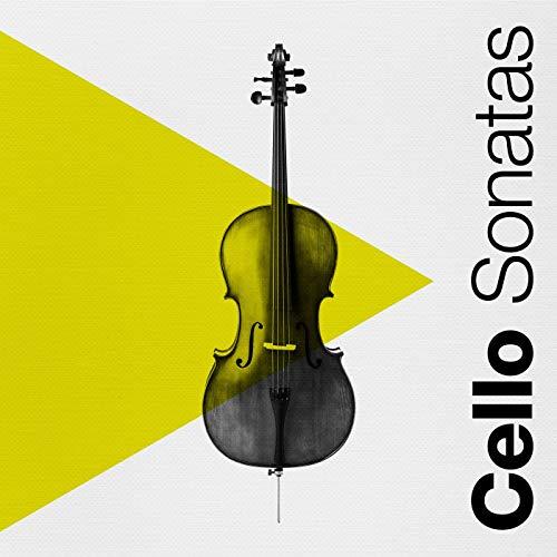 Sonata No. 2 for Cello and Piano: V. Lento