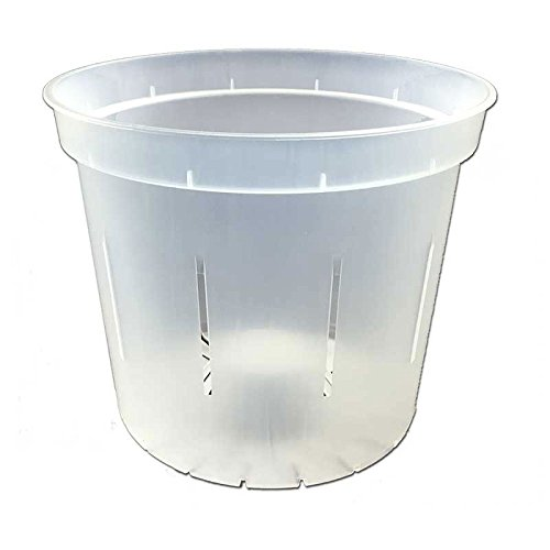 6' Slotted Clear Orchid Pots by rePotme - 6 Pack (Crystal Clear)
