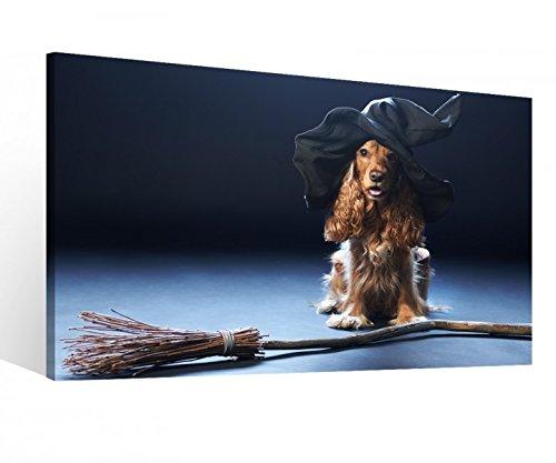 Leinwand 1Tlg XXL Hund Hexe Hut Hexenbesen Halloween Leinwandbild Bilder Bild Wandbild Holz fertig gerahmt 9S819, XL 1Tlg BxH:60cmx40cm
