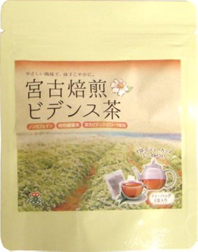 同じ受け継ぐアトミック宮古焙煎ビデンス茶 2g×8袋入り