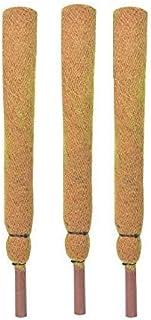 COIR GARDEN Coir Moss Stick/Coco Pole for Climbing Money Plants, Indoor and Outdoor Plants 1.5 ft, 45 cm - Set of 3