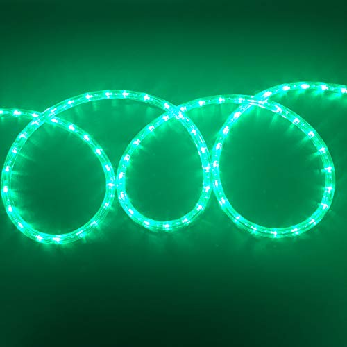 Asparkle UL liseted 18Ft 216 Green LED Flexible Rope Lights Kit, Indoor/Outdoor Lighting, Home, Garden, Patio, Shop Windows, Christmas, New Year, Wedding, Birthday, Party, Event (Green)