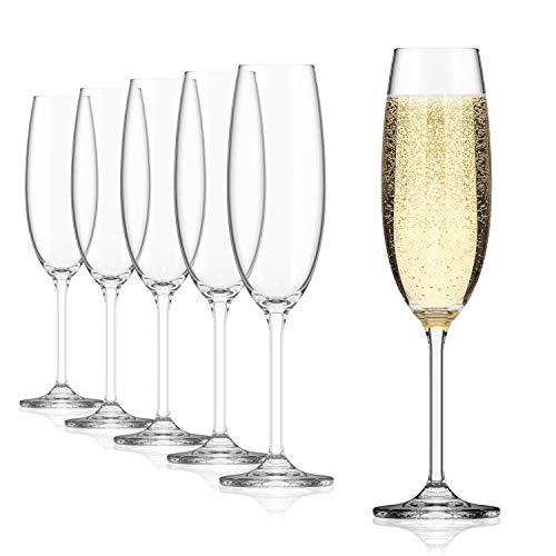 Sahm Calici Champagne 6 unità | Coppe Champagne 220ml | Bicchieri Flute Eleganti per Prosecco | Calici Spumante Resistenti | Calici di Vetro Champagne