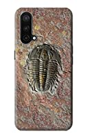 JP1454ONC 三葉虫の化石 Trilobite Fossil For OnePlus Nord CE 5G 用ケース