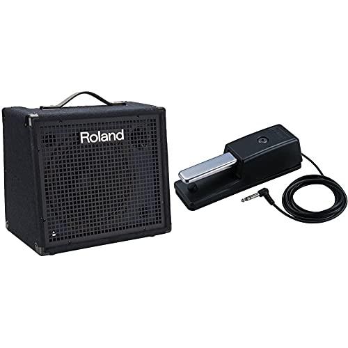 Roland KC-200 4 Channel Mixing Keyboard Amplifier, 100-Watt & DP-10 Real-Feel Pedal...