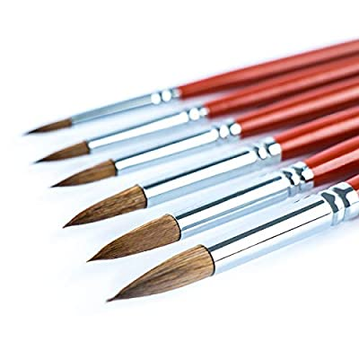 Transon Artist Round Watercolor Paint Brush