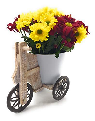 Maceta Triciclo Decoración para el hogar jardín o Interior de Metal y Madera (Blanco)
