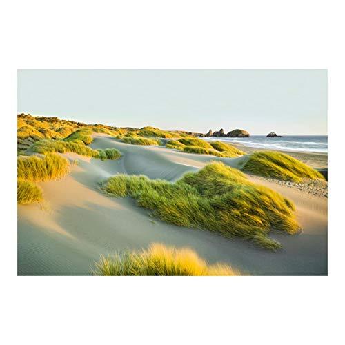Bilderwelten Vlies Fototapete Strand Dünen und Gräser am Meer Tapete 190x288cm