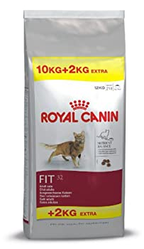 Royal Canin - Feline Fit 32 - Nourriture pour chat - 1 x 12 kg