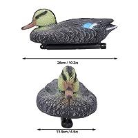 アヒルの装飾、高シミュレーションの鮮やかなモデリング26x11.5cmプラスチック製のアヒル、庭の中庭用(Mandarin Duck Mother)