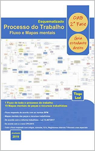 PROCESSO DO TRABALHO ESQUEMATIZADO - FLUXO E MAPAS MENTAIS