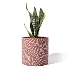 [MODERN DESIGN] A classic midcentury silhouette and a white crackle glaze make this earthenware cachepot the perfect partner for indoor potted plants or any of our faux botanicals. 6.1 inch garden pots are perfect for your snake plant, aloe, oxalis t...