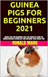 GUINEA PIGS FOR BEGINNERS 2021: GUINEA PIGS FOR BEGINNERS 2021:THE COMPLETE GUIDE ON CARING,HOUSING,FEEDING,DIET AND BREEDING YOUR GUINEA PIGS (English Edition)