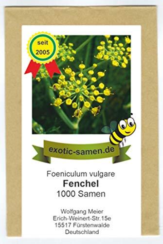 Fenchel, Süßfenchel - Bienenweide - Arzneipflanze des Jahres 2009 - Foeniculum vulgare - 1000 Samen