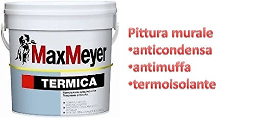 TERMICA 'Max Meyer'...