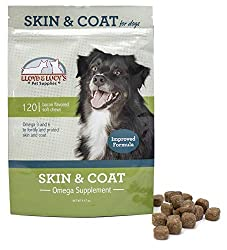 10 Best Coat Supplement For Dogs