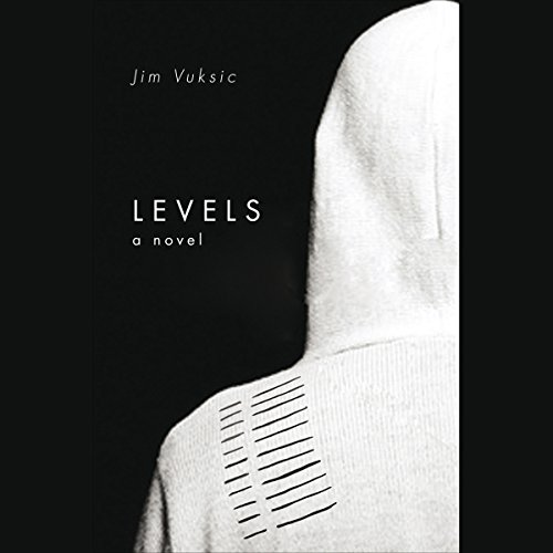 Levels  audiobook cover art
