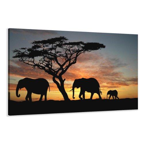 bestpricepictures 120 x 80 cm Bild auf Leinwand Afrika Elefant 5066-SCT deutsche Marke und Lager - Die Bilder/das Wandbild/der Kunstdruck ist fertig gerahmt