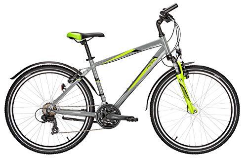 Jugend Fahrrad 26 Zoll grau - Pegasus Avanti Sport Jungen Trekkingrad - Shimano Kettenschaltung, STVZO Beleuchtung