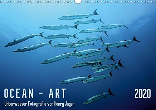 OCEAN - ART (Wandkalender 2020 DIN A3 quer): Einzigartige Unterwasserfotografien aus den Meeren dieser Welt (Monatskalender, 14 Seiten ) (CALVENDO Natur)